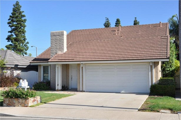 3 Star Thistle, Irvine, CA - USA (photo 3)