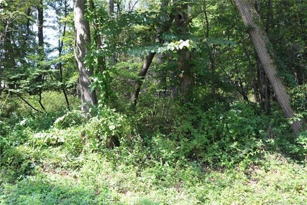 Residential Land - Sherman, CT (photo 3)