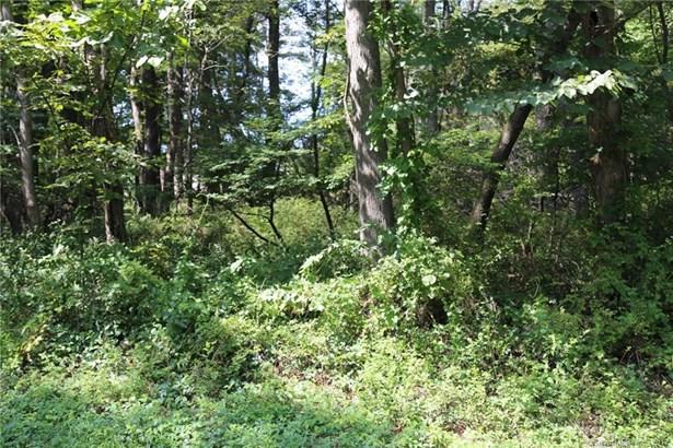 Residential Land - Sherman, CT (photo 4)