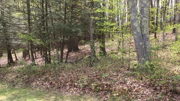 Residential Land - Sherman, CT (photo 1)