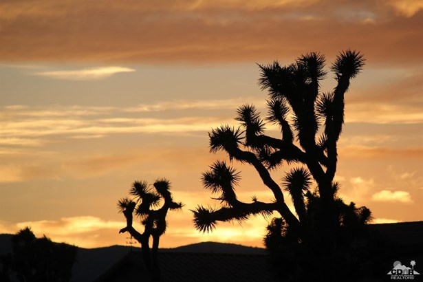Lots and Land - 29 Palms, CA (photo 5)