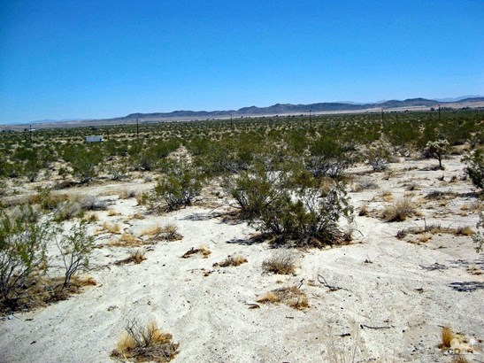 Lots and Land - Joshua Tree, CA (photo 5)