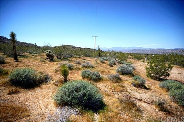 0 Olympic, Joshua Tree, CA - USA (photo 4)