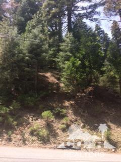 Lots and Land - Lake Arrowhead, CA (photo 5)