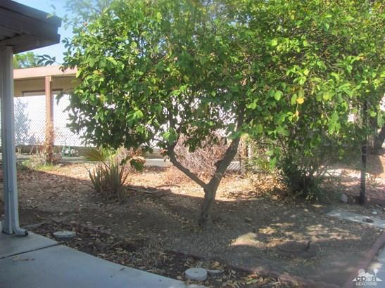 81711 San Salvador, Indio, CA - USA (photo 4)