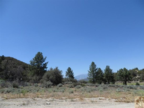 Lots and Land - Mountain Center, CA (photo 3)