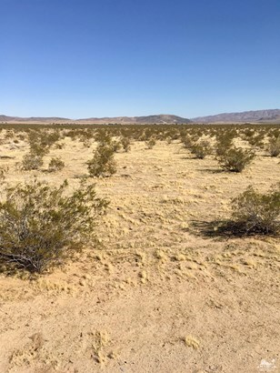 Lots and Land - Joshua Tree, CA (photo 3)