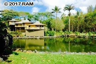 134 Waikoloa, Hana, HI - USA (photo 3)