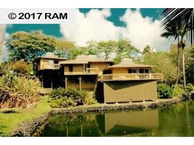 134 Waikoloa Rd, Hana, HI - USA (photo 3)