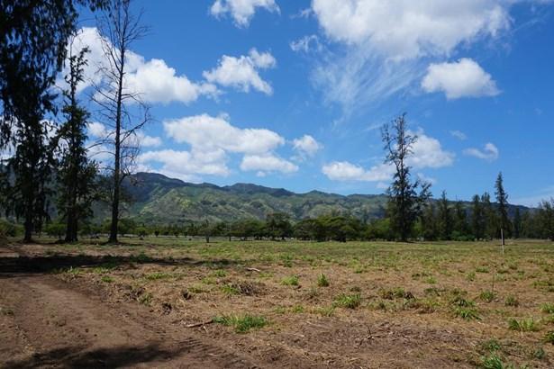 68-419 Farrington, Waialua, HI - USA (photo 4)