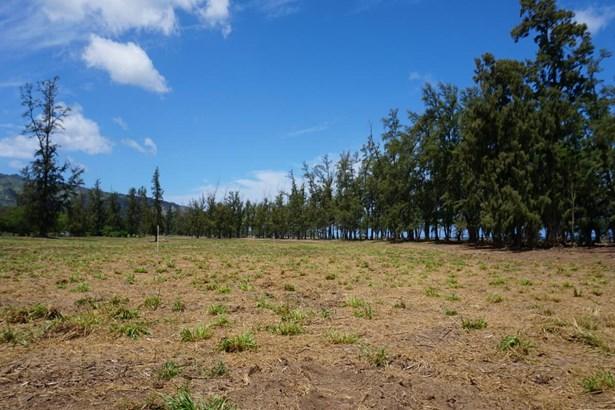 68-419 Farrington, Waialua, HI - USA (photo 5)