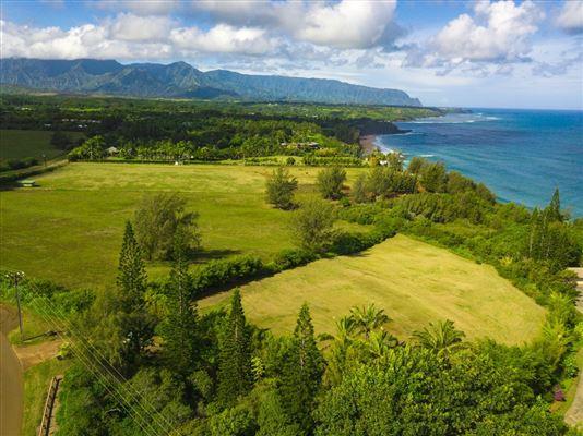 3700 Kilauea Rd B, Kilauea, HI - USA (photo 1)