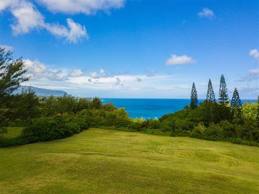 3700 Kilauea Rd B, Kilauea, HI - USA (photo 2)