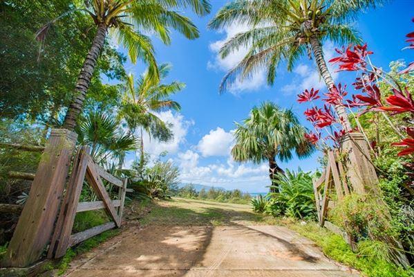 3700 Kilauea Rd B, Kilauea, HI - USA (photo 5)