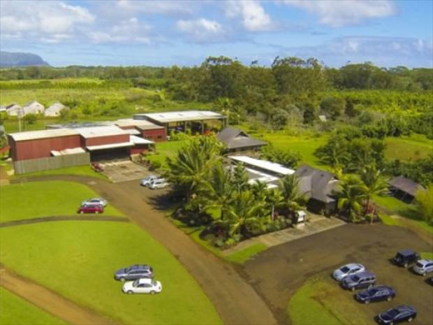 4900 Kuawa Rd, Kilauea, HI - USA (photo 2)
