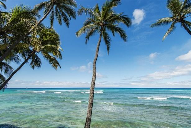 3003 Kalakaua 2b, Honolulu, HI - USA (photo 2)