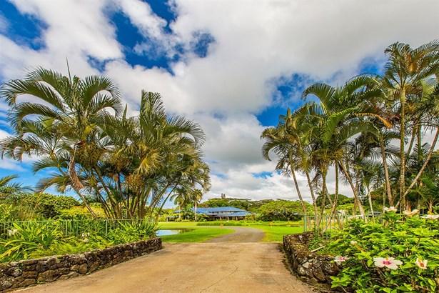 4591 Kuawa Rd, Kilauea, HI - USA (photo 4)