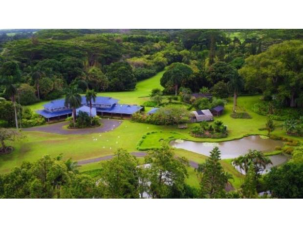 4591 Kuawa Rd, Kilauea, HI - USA (photo 1)