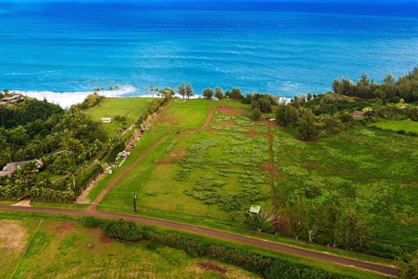 Kauapea Rd., Kilauea, HI - USA (photo 1)