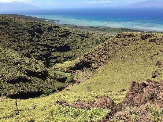 Makolelau-kamalo, Kaunakakai, HI - USA (photo 4)