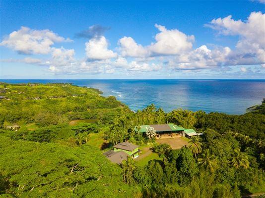 5-3000 Kuhio Hwy A, Kilauea, HI - USA (photo 3)