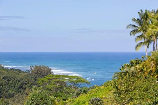 5-3000 Kuhio Hwy A, Kilauea, HI - USA (photo 5)