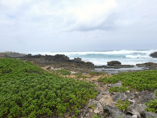 56-1081 Kamehameha Hwy, Kahuku, HI - USA (photo 1)