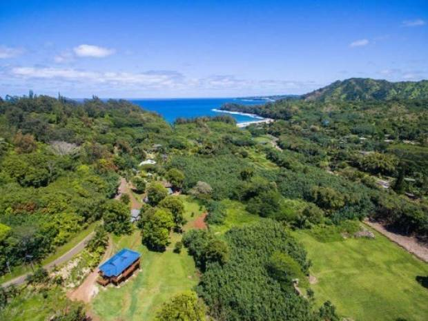 4641 Wainiha Power Hse Rd, Hanalei, HI - USA (photo 3)