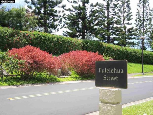114 Pulelehua St, Kapalua, HI - USA (photo 2)