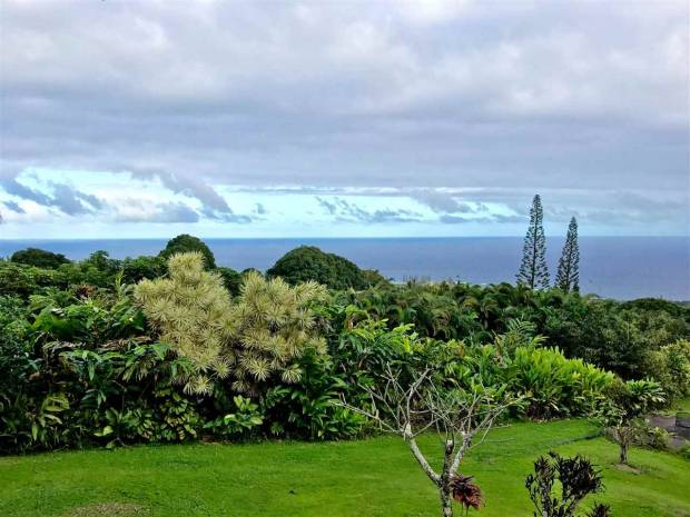 470 Waiohonu Rd, Hana, HI - USA (photo 4)