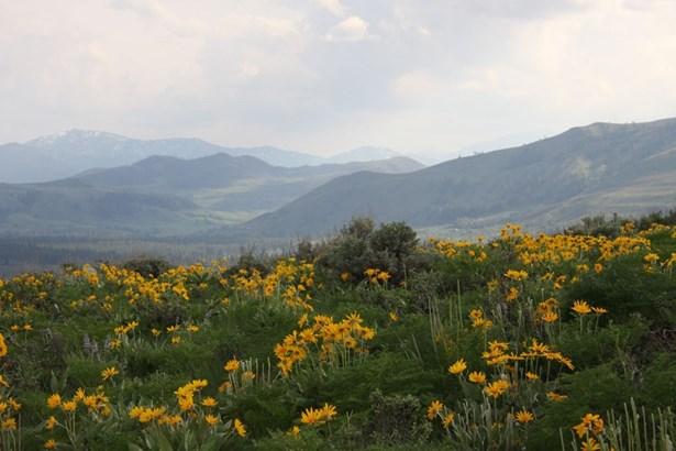 54 Mule Deer Trail, Winthrop, WA - USA (photo 1)