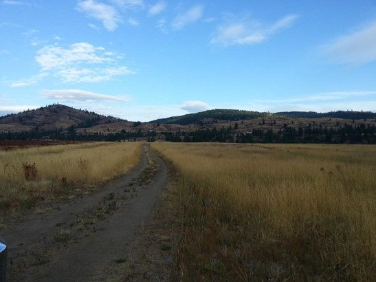 000 W Kettle River Rd, Curlew, WA - USA (photo 2)