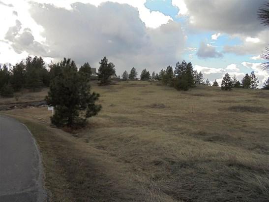 3710 W Crandall Ln, Spokane, WA - USA (photo 1)