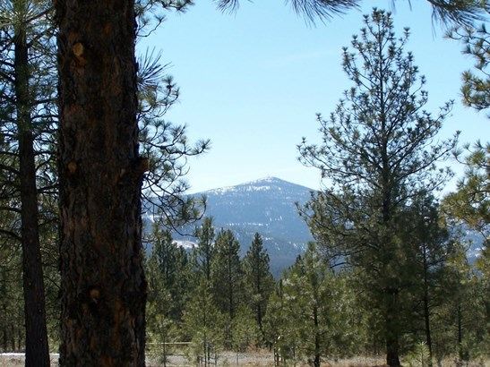 0 Look Out Trail Spur, Riverside, WA - USA (photo 1)