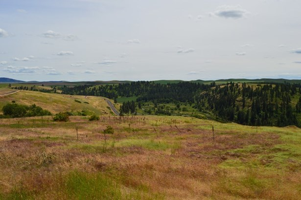 Tbd Red Tail Ridge Lot 19, Colfax, WA - USA (photo 4)