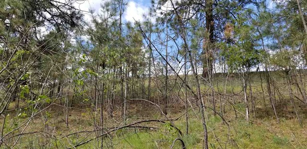 68xx Hwy 291 Hwy, Tumtum, WA - USA (photo 2)