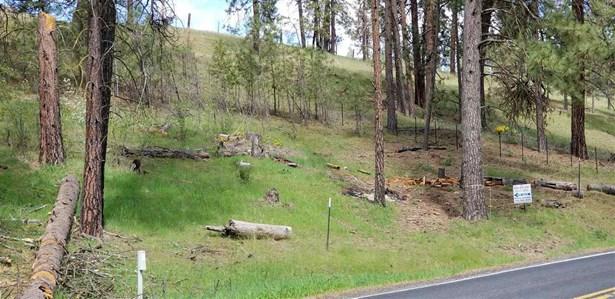 68xx Hwy 291 Hwy, Tumtum, WA - USA (photo 5)