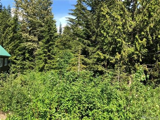 0 Snoqualmie Dr, Snoqualmie Pass, WA - USA (photo 4)