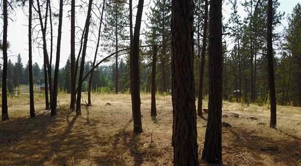 9028 N Seven Mile Rd, Nine Mile Falls, WA - USA (photo 3)