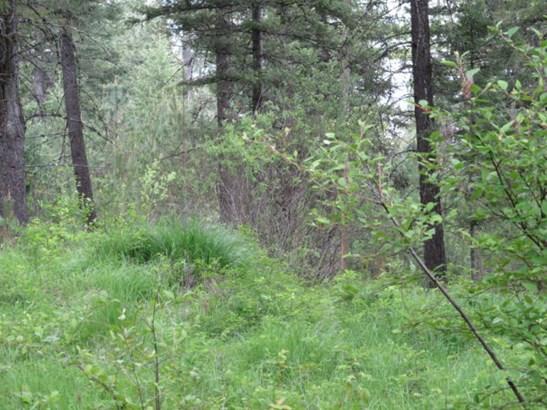 Nna Lodge Pole Ln., Elk, WA - USA (photo 2)