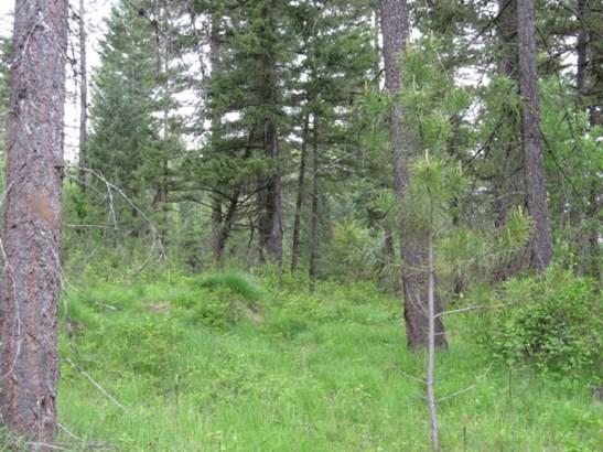 Nna Lodge Pole Ln., Elk, WA - USA (photo 4)