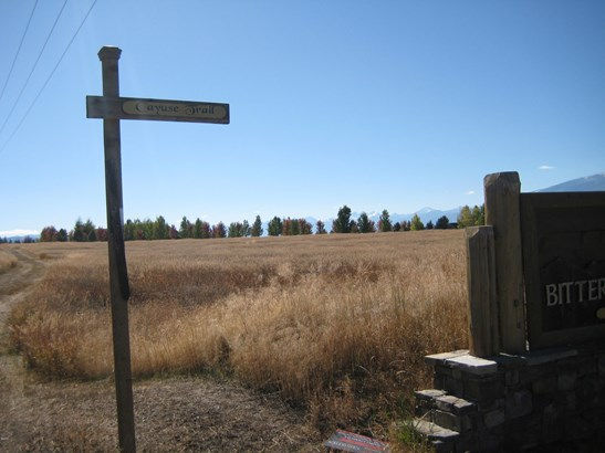 Nhn Cayuse Trail Lot 10, Corvallis, MT - USA (photo 5)