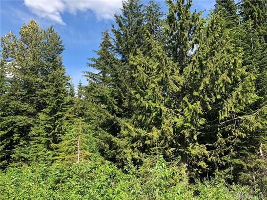 0 Cascade Place, Snoqualmie Pass, WA - USA (photo 3)