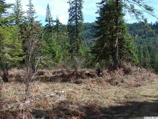 Tbd Lot 13b Indian Creek Rd, Orofino, ID - USA (photo 1)