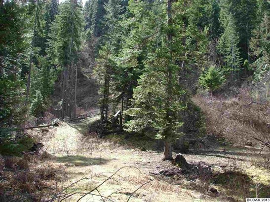 Tbd Lot 13b Indian Creek Rd, Orofino, ID - USA (photo 2)