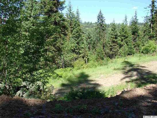 Tbd  Lot 18 Moose Ridge Drive, Orofino, ID - USA (photo 5)