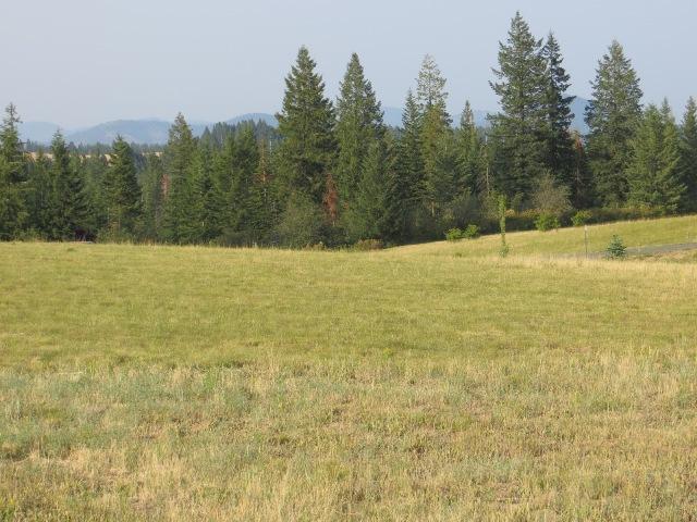 Nka S Sunray Trail, Worley, ID - USA (photo 2)