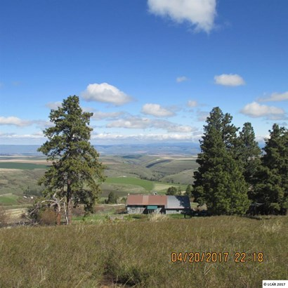 39123 Hilltop Lane, Lewiston, ID - USA (photo 4)