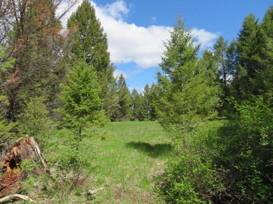 878 Toroda Creek Rd, Wauconda, WA - USA (photo 2)