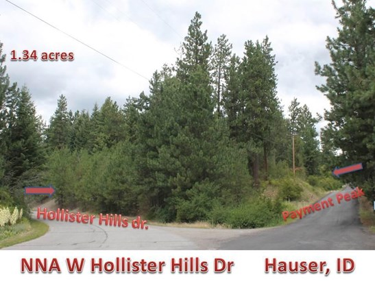 Nna Hollister Hills Dr, Hauser, ID - USA (photo 3)